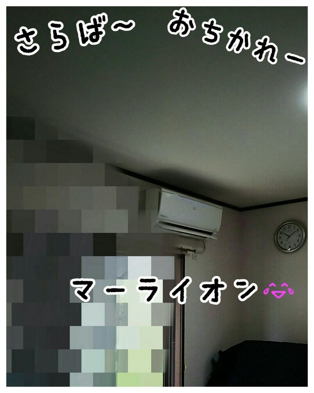 f:id:sakuratansokuclub1996:20180915110519j:image