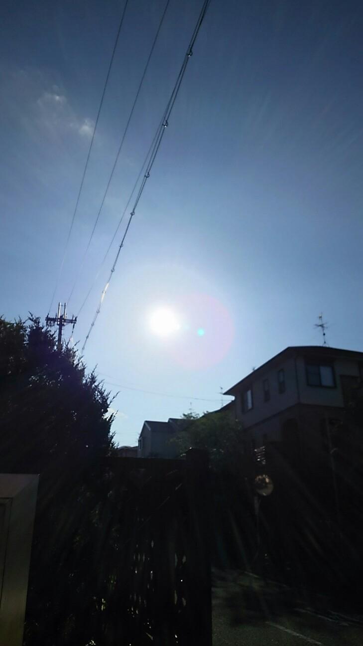 f:id:sakuratansokuclub1996:20181016100236j:image
