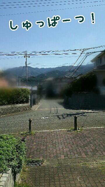f:id:sakuratansokuclub1996:20190404234103j:image