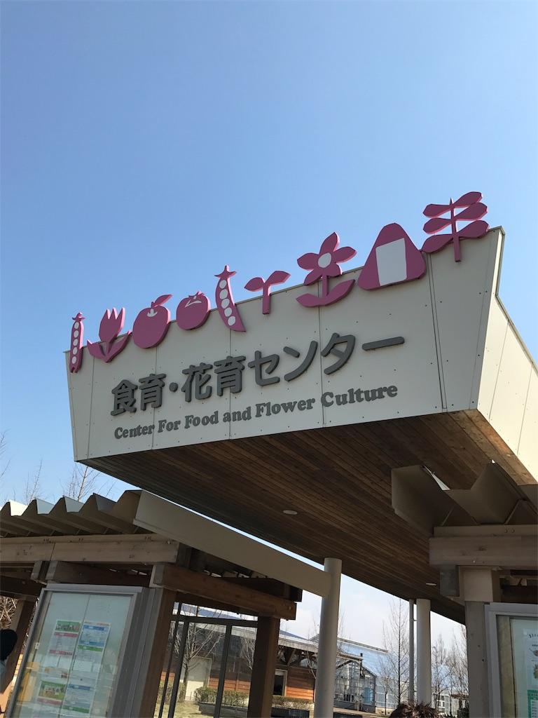 f:id:sakuraya225:20170320085402j:image