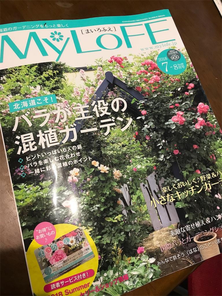 f:id:sakuraya225:20180627072301j:image