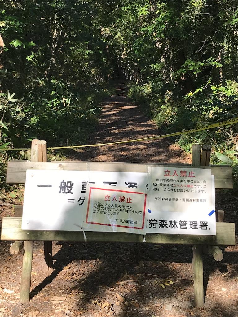 f:id:sakuraya225:20180924021701j:image