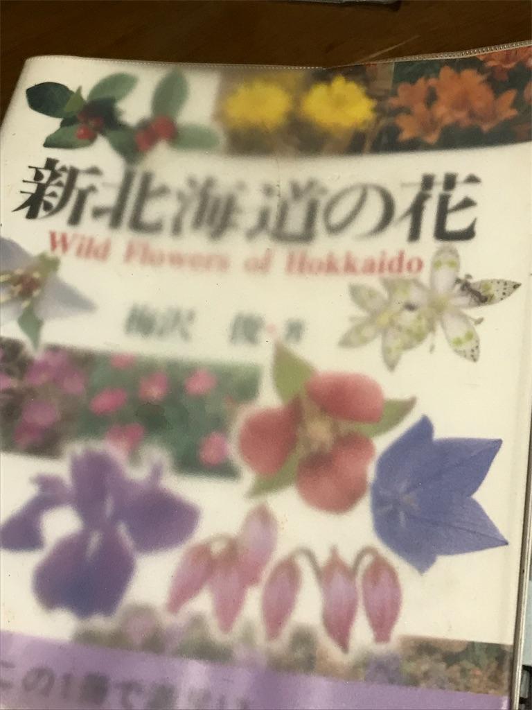 f:id:sakuraya225:20190509222849j:image