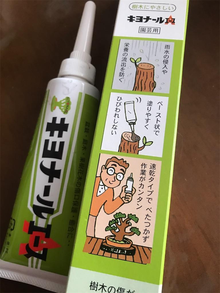 f:id:sakuraya225:20200226161532j:image