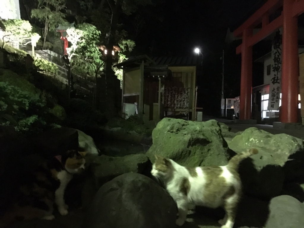 f:id:sakurayamashiro:20160707014417j:plain