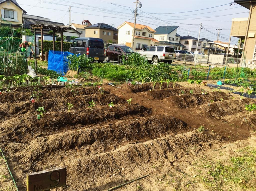 f:id:sakurayamashiro:20160709005736j:plain