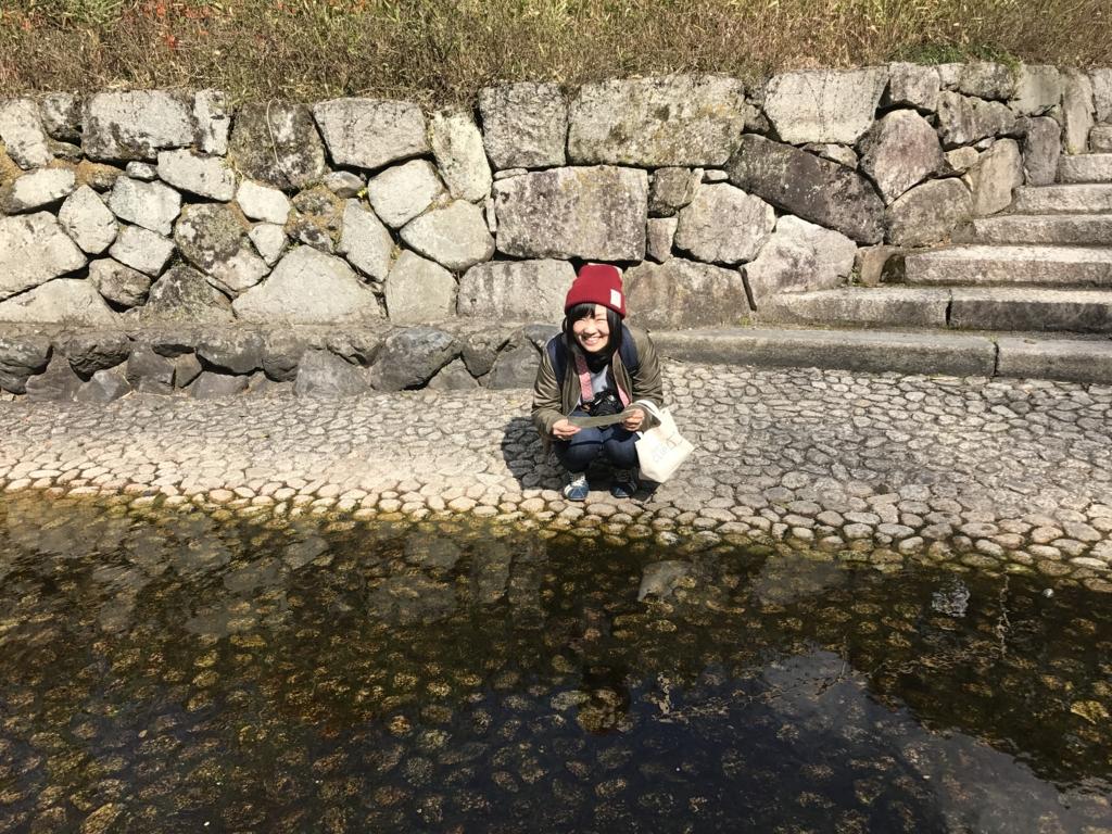 f:id:sakurayamashiro:20170404120141j:plain
