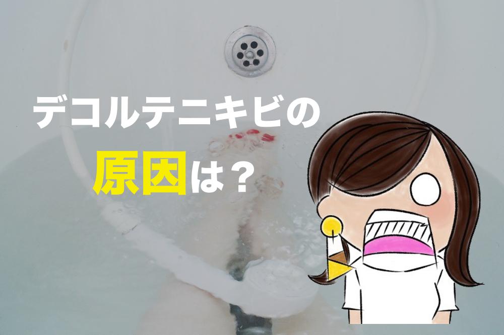 f:id:sakurayamashiro:20170709212734j:plain