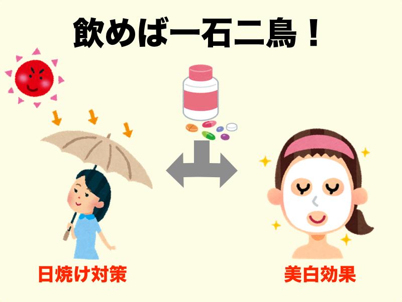f:id:sakurayamashiro:20170831195231j:plain