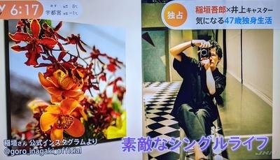 f:id:sakusaku-2:20210502202934j:plain