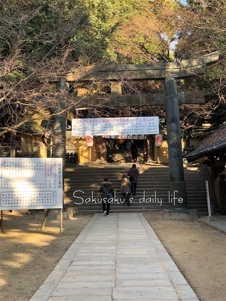 f:id:sakusaku-happy:20190210104728j:image