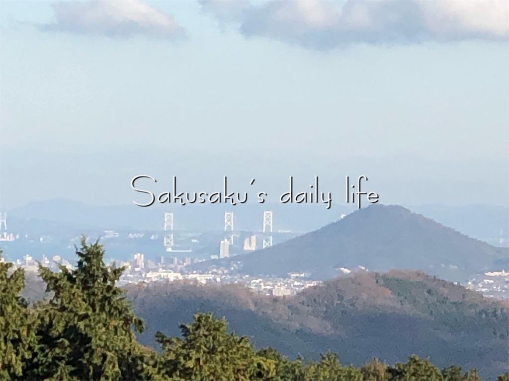 f:id:sakusaku-happy:20190210104734j:image