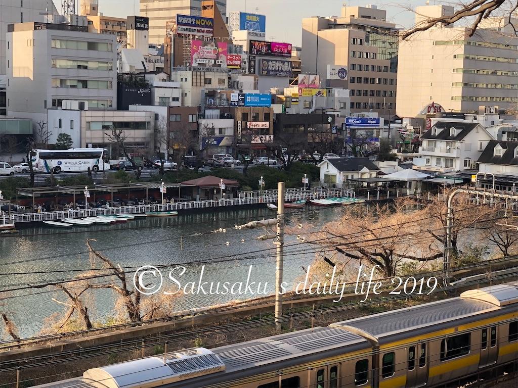 f:id:sakusaku-happy:20190320221009j:image