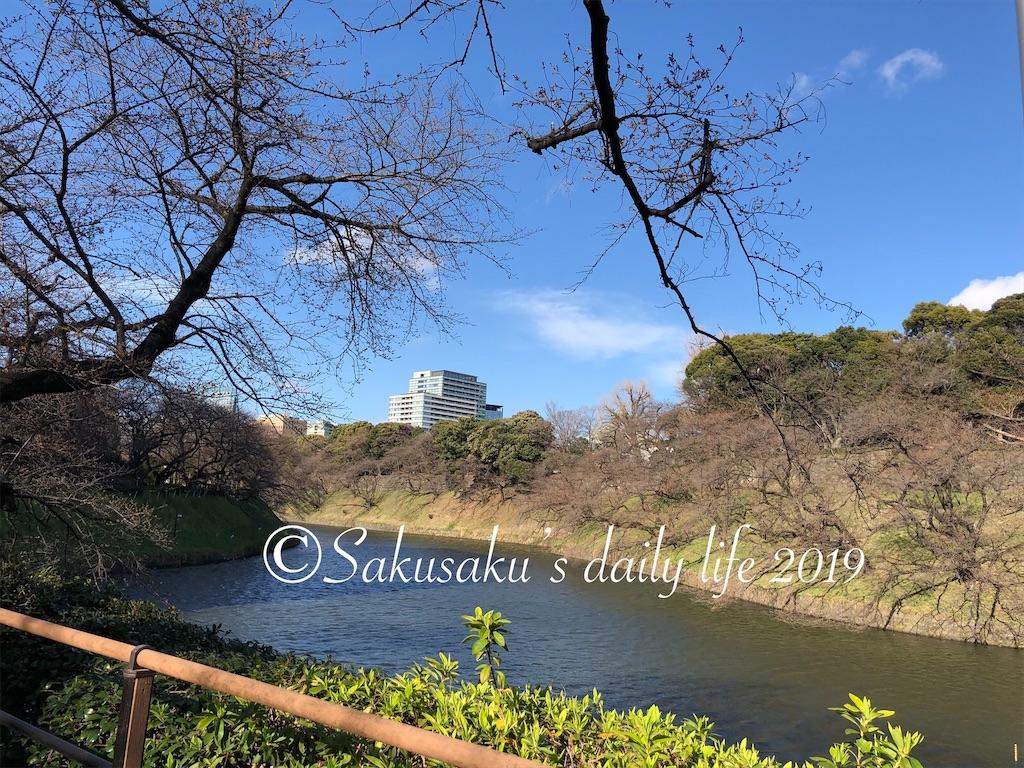 千鳥ヶ淵緑道ボート場近くの風景