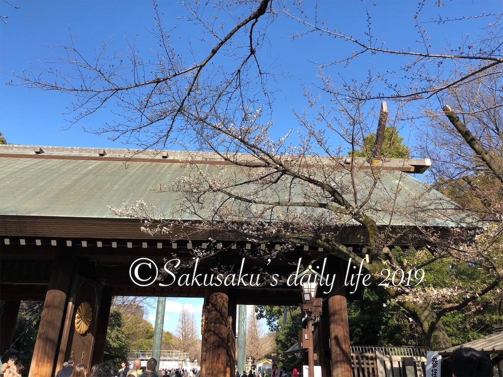 靖国神社境内の桜1