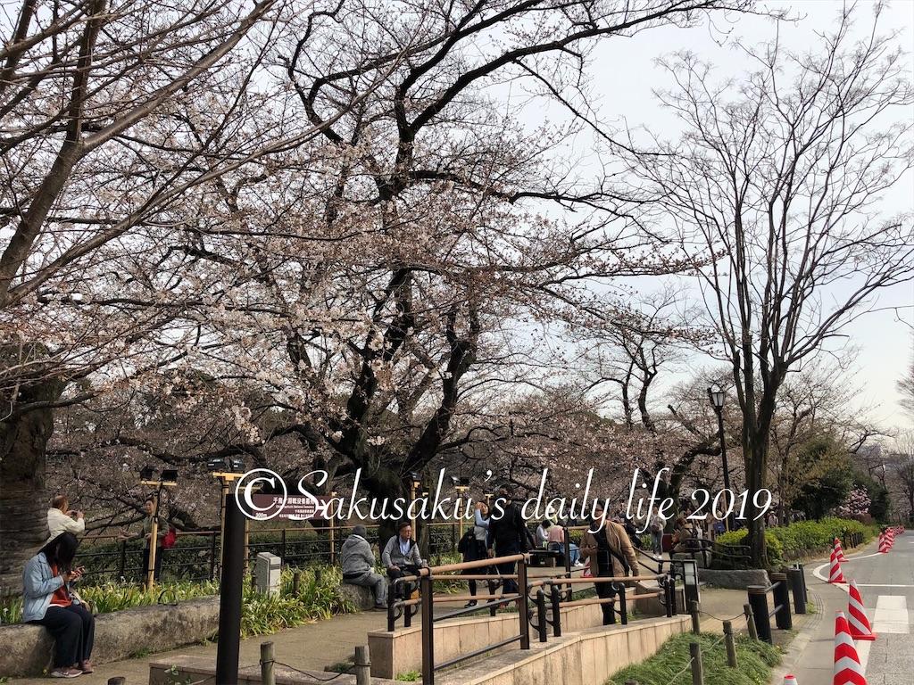 千鳥ヶ淵緑道 ボート場周辺の桜