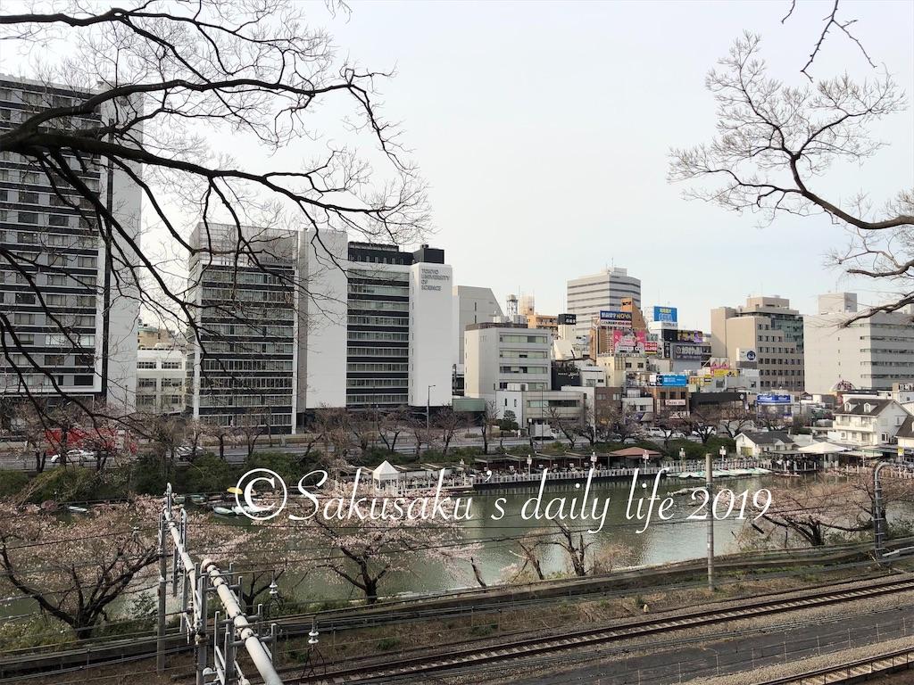 外濠公園 桜並木 飯田橋駅近く