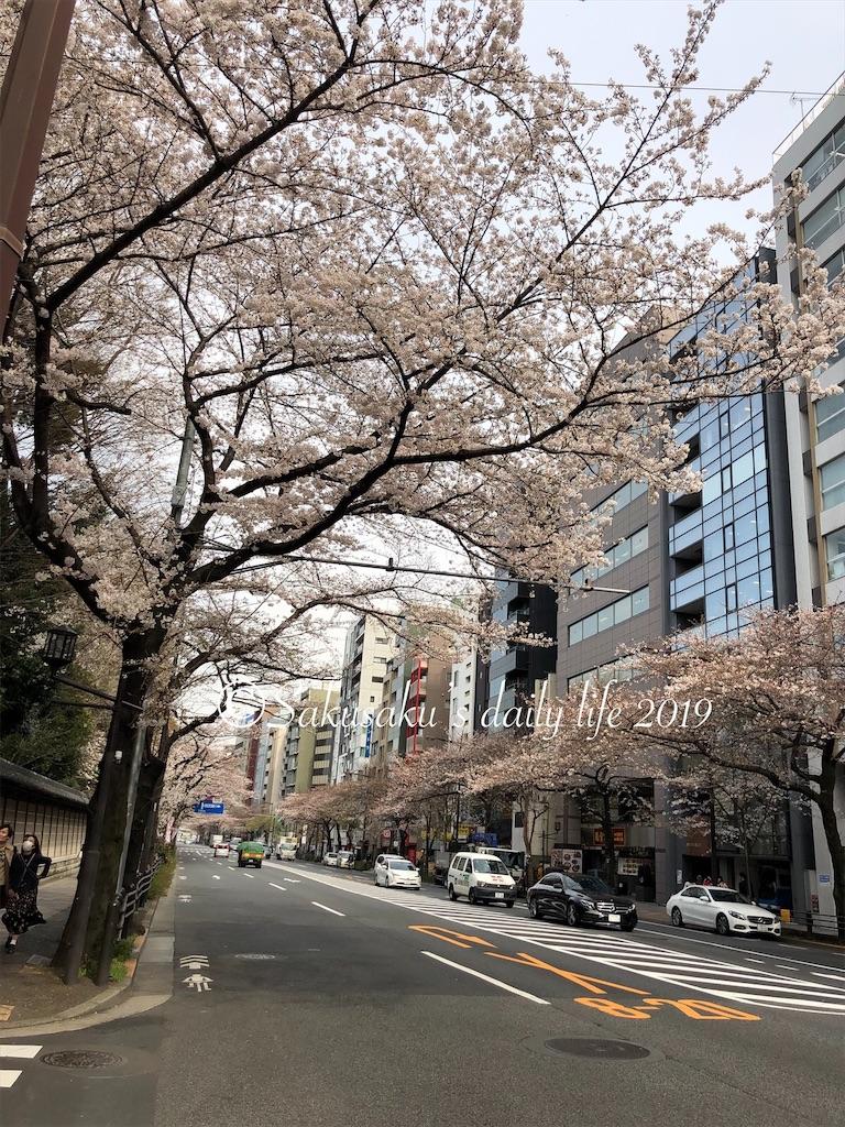 靖国通り 靖国神社前の桜並木
