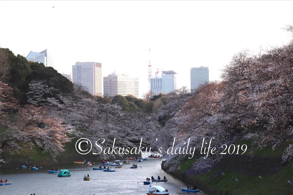 f:id:sakusaku-happy:20190327203055j:image
