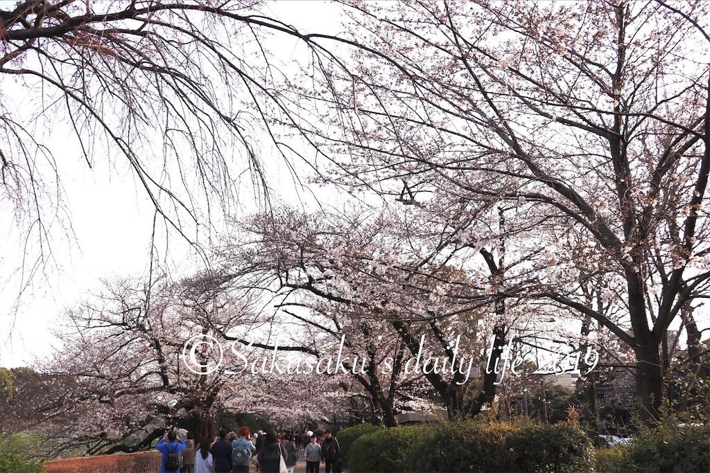 f:id:sakusaku-happy:20190327203104j:image