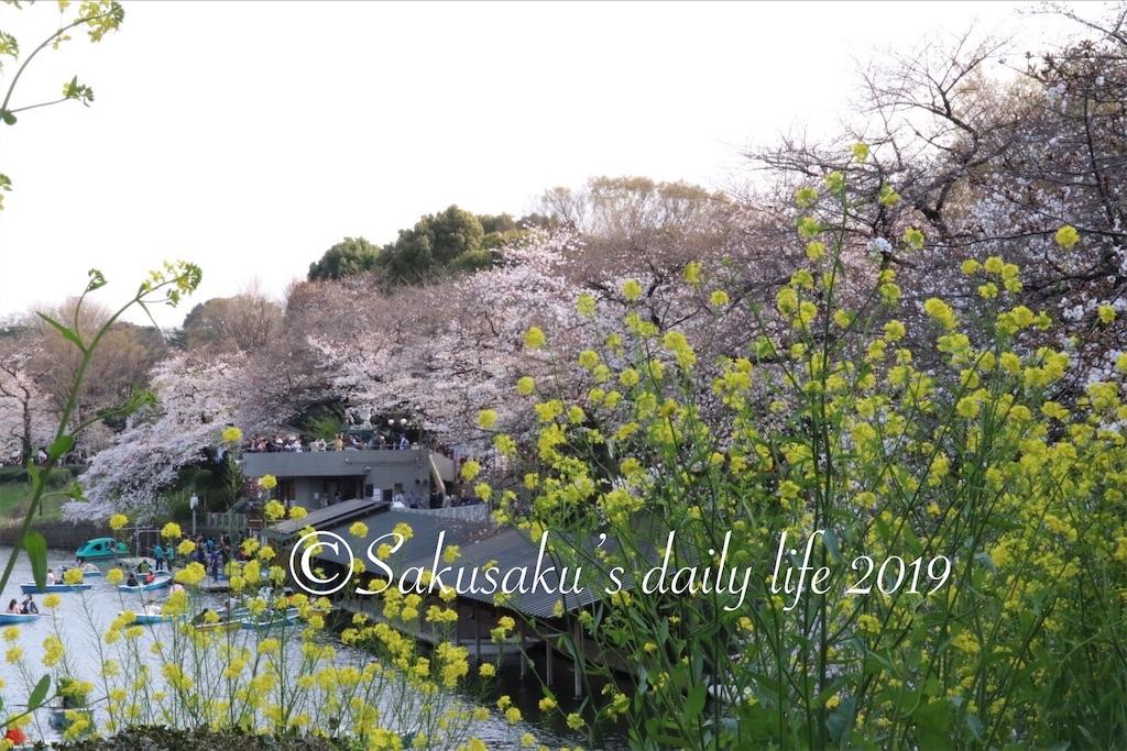 f:id:sakusaku-happy:20190327203118j:image