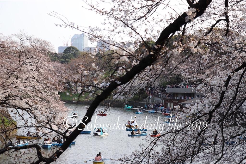 f:id:sakusaku-happy:20190327203135j:image