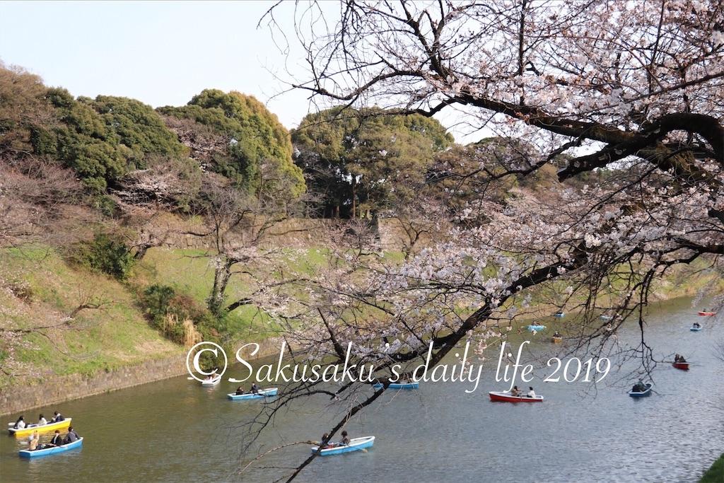f:id:sakusaku-happy:20190327203148j:image