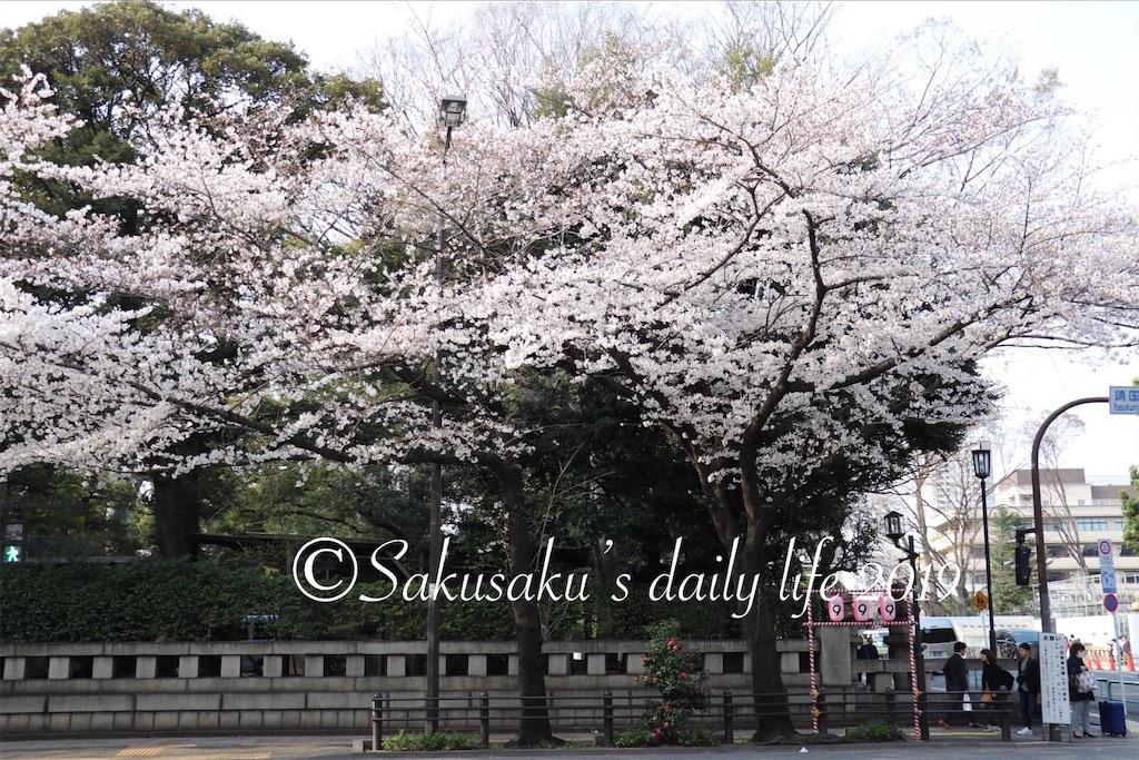 f:id:sakusaku-happy:20190327203152j:image