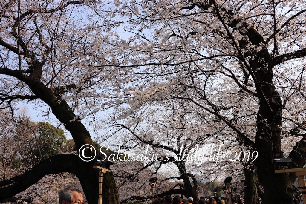 f:id:sakusaku-happy:20190327203158j:image