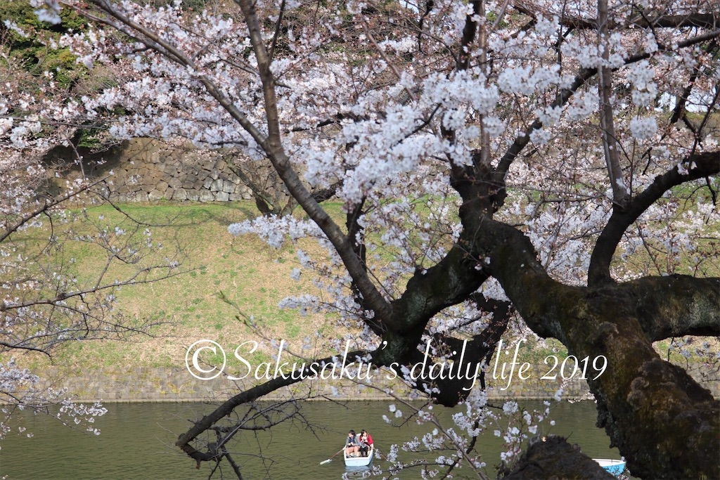 f:id:sakusaku-happy:20190327203202j:image