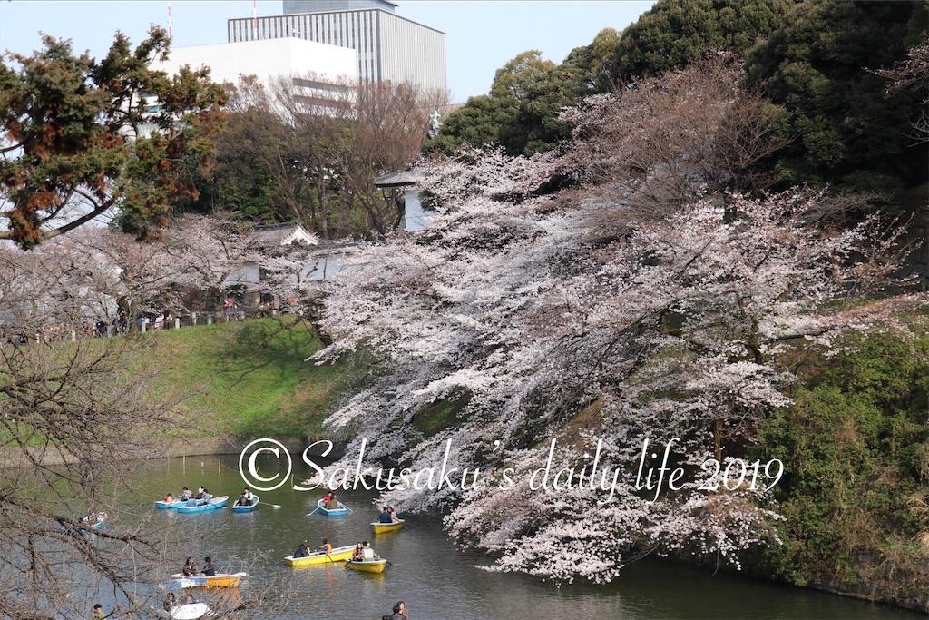 f:id:sakusaku-happy:20190327203216j:image