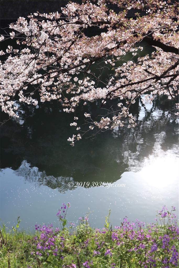 f:id:sakusaku-happy:20190409090300j:image