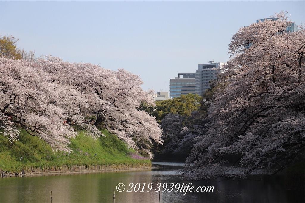 f:id:sakusaku-happy:20190409090307j:image