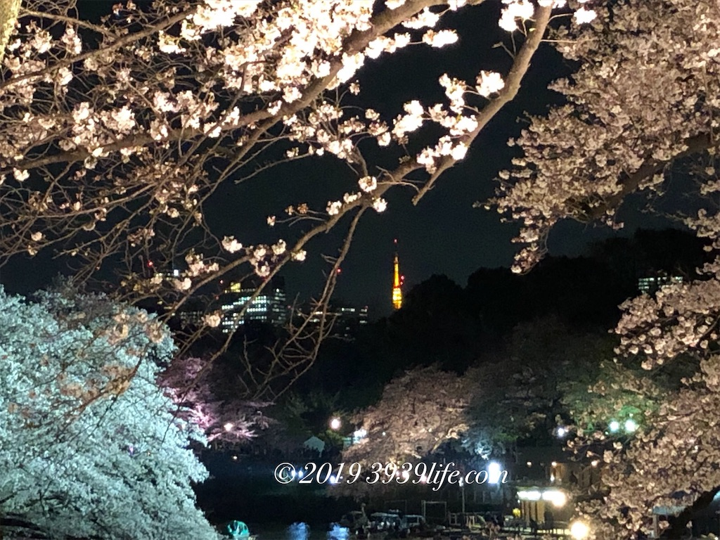 f:id:sakusaku-happy:20190409090312j:image
