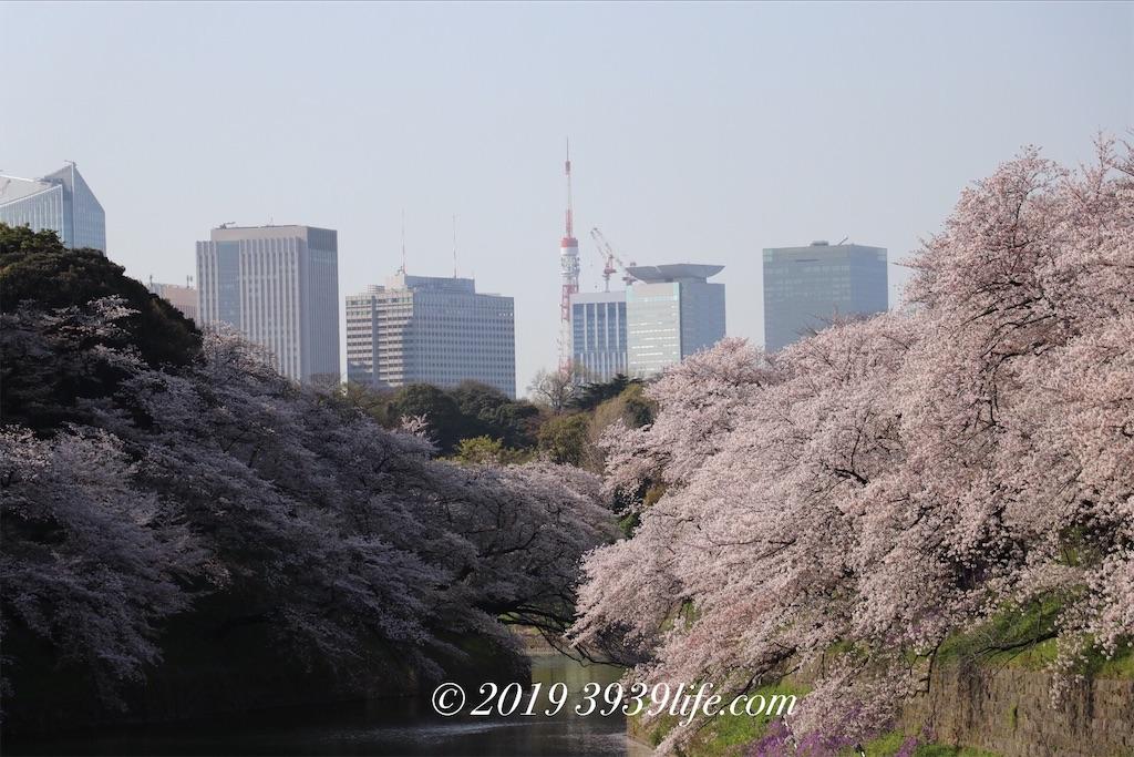 f:id:sakusaku-happy:20190409090321j:image