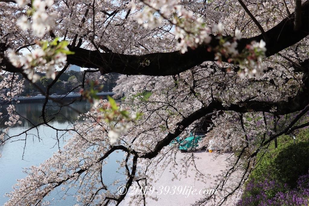 f:id:sakusaku-happy:20190409090331j:image