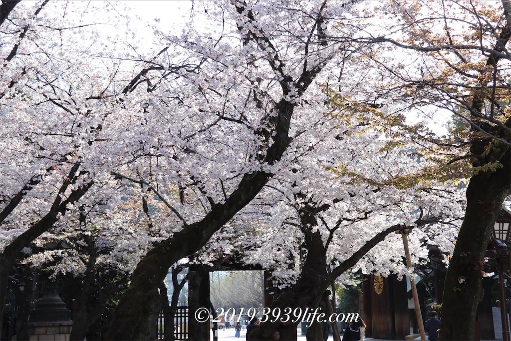 f:id:sakusaku-happy:20190409090338j:image