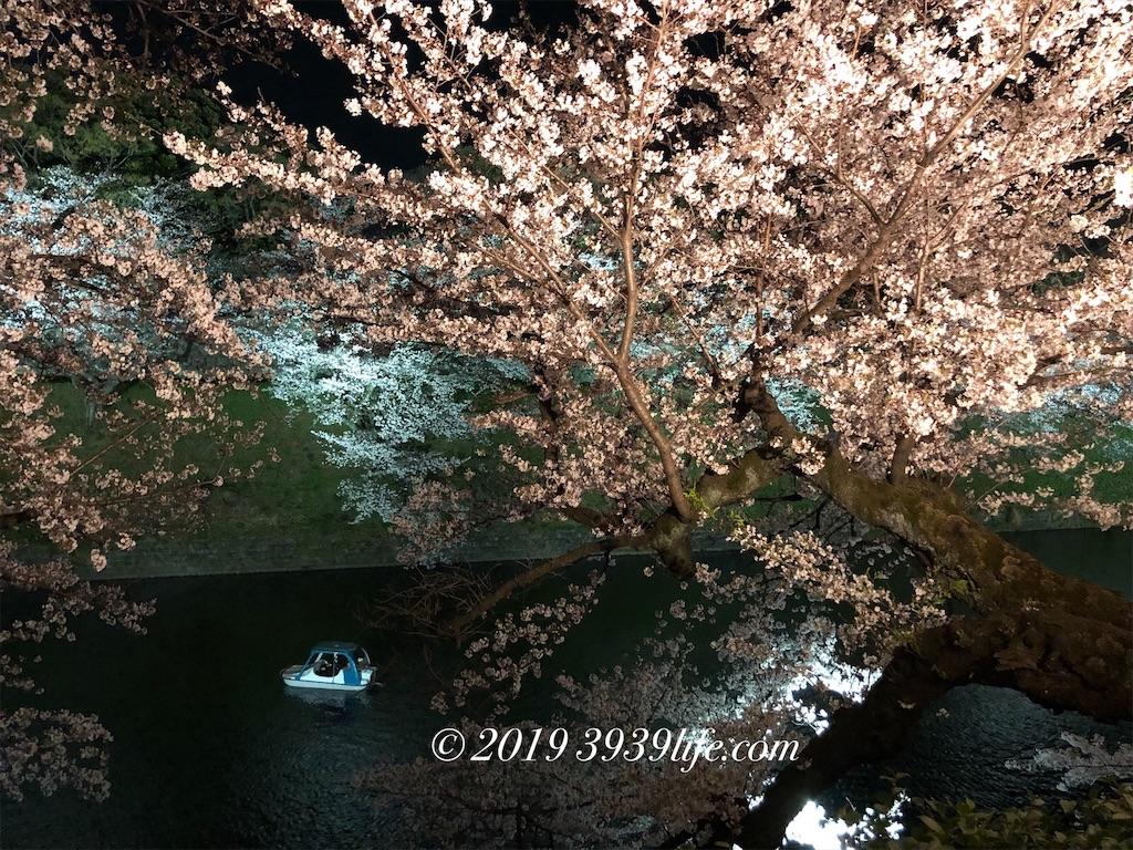 f:id:sakusaku-happy:20190409090343j:image