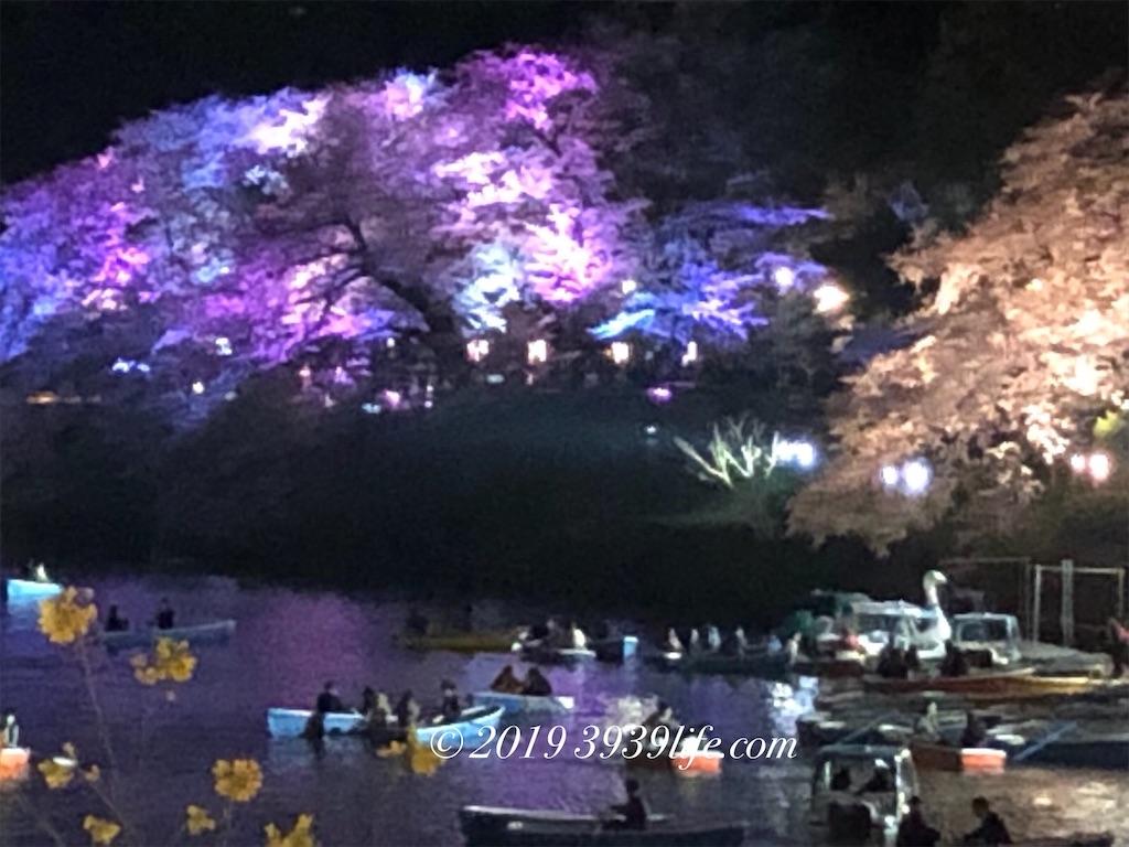 f:id:sakusaku-happy:20190409090403j:image