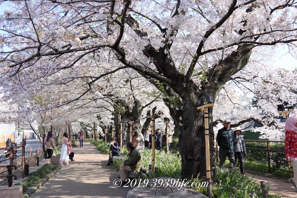 f:id:sakusaku-happy:20190409090414j:image