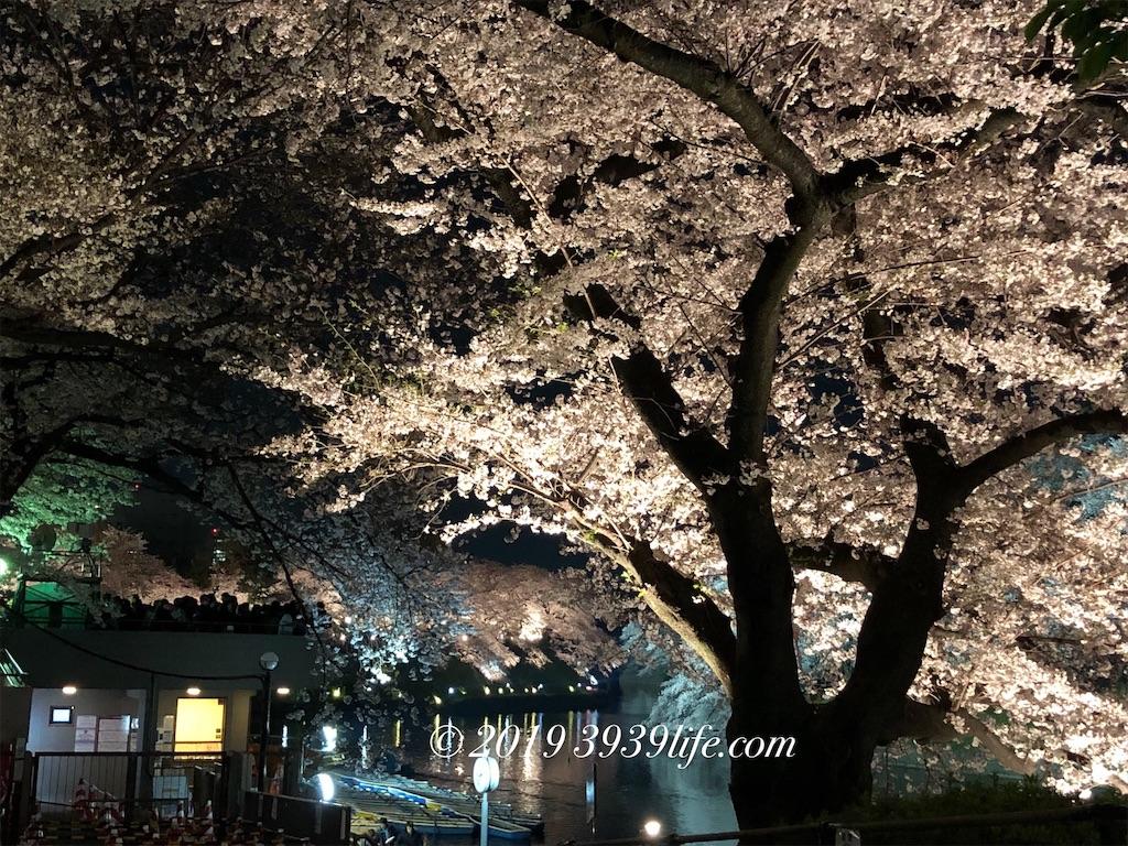 f:id:sakusaku-happy:20190409090418j:image