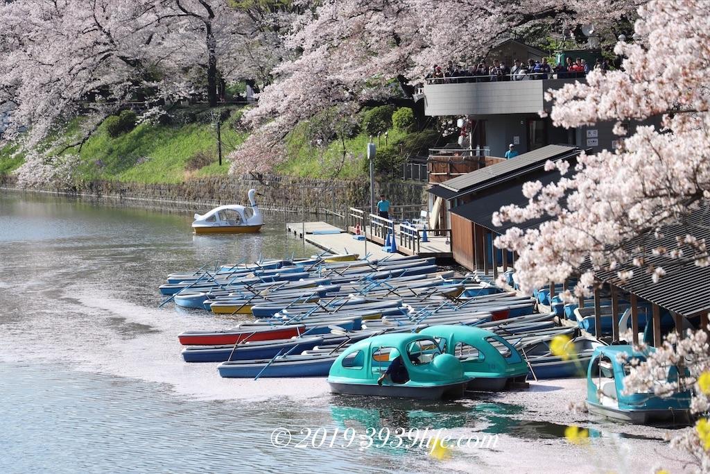 f:id:sakusaku-happy:20190409090425j:image