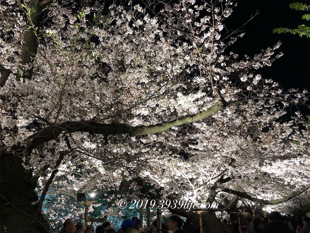 f:id:sakusaku-happy:20190409091613j:image