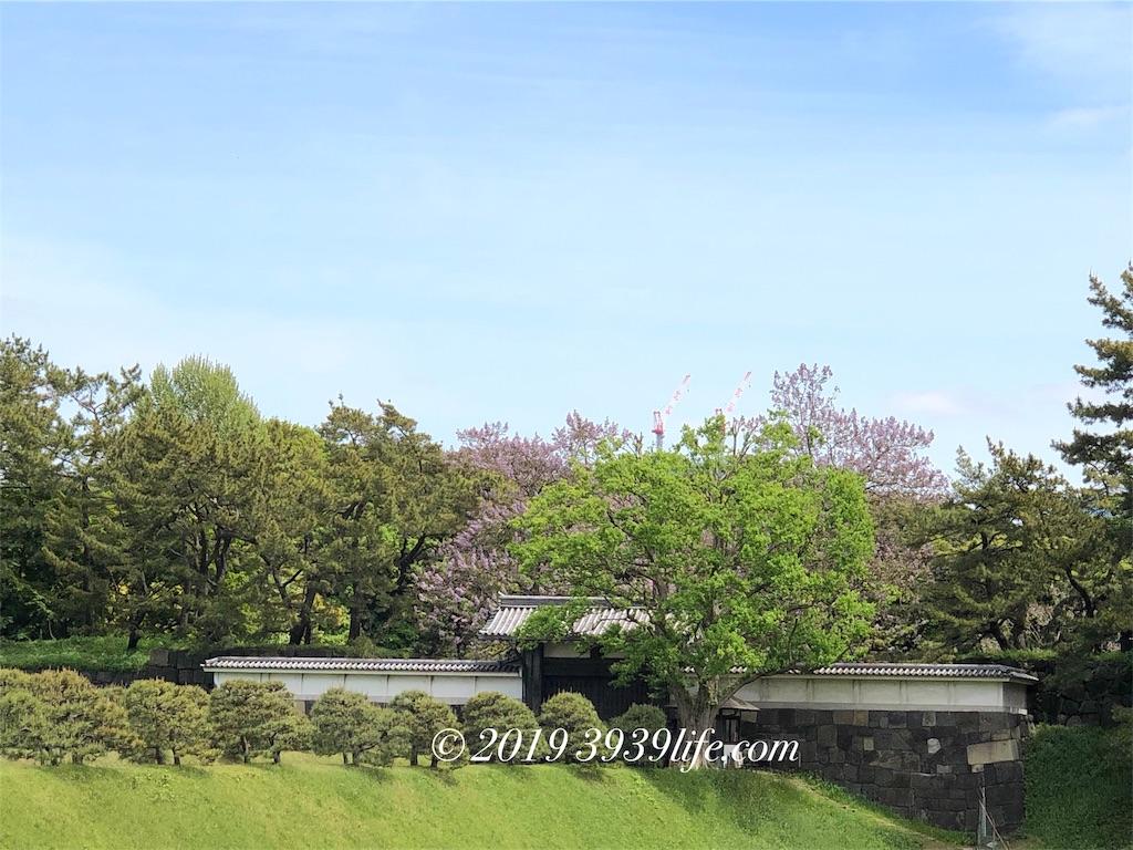 f:id:sakusaku-happy:20190501182507j:image