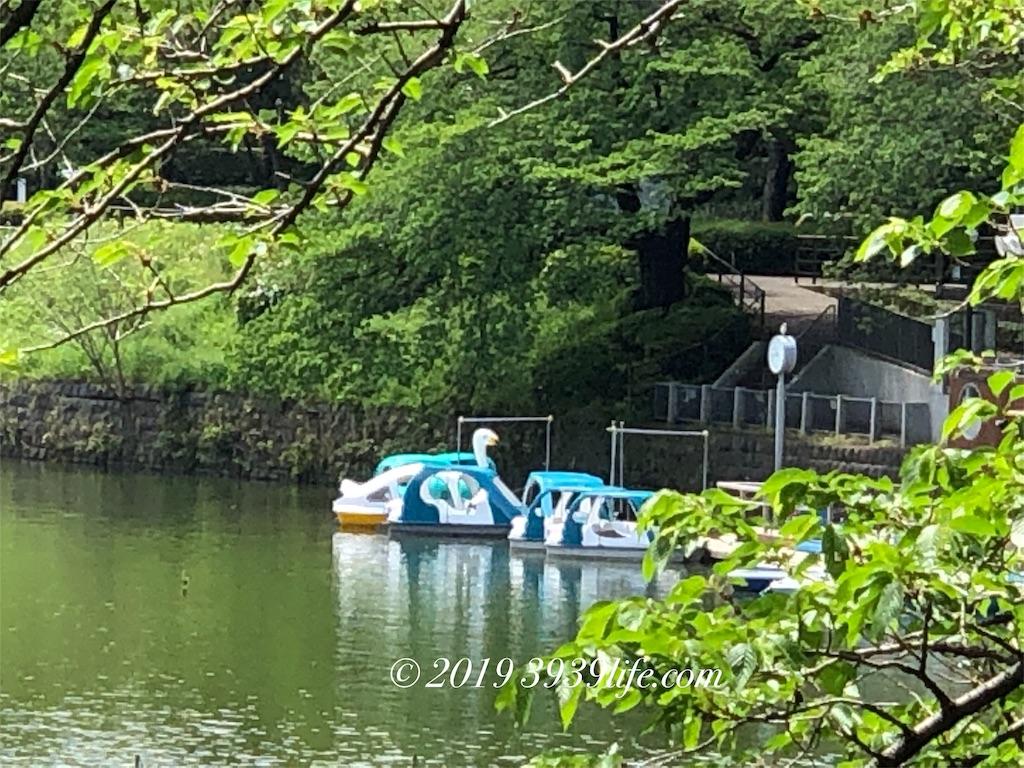 f:id:sakusaku-happy:20190501182544j:image