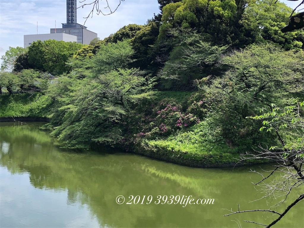f:id:sakusaku-happy:20190501182612j:image