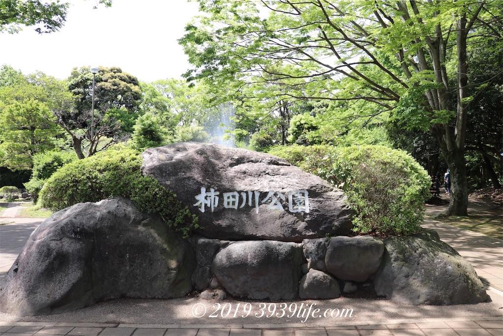 f:id:sakusaku-happy:20190514185418j:image