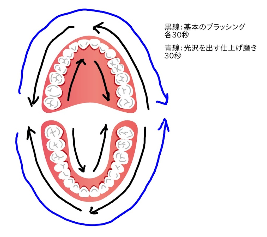 f:id:sakusaku-happy:20190613114847j:image
