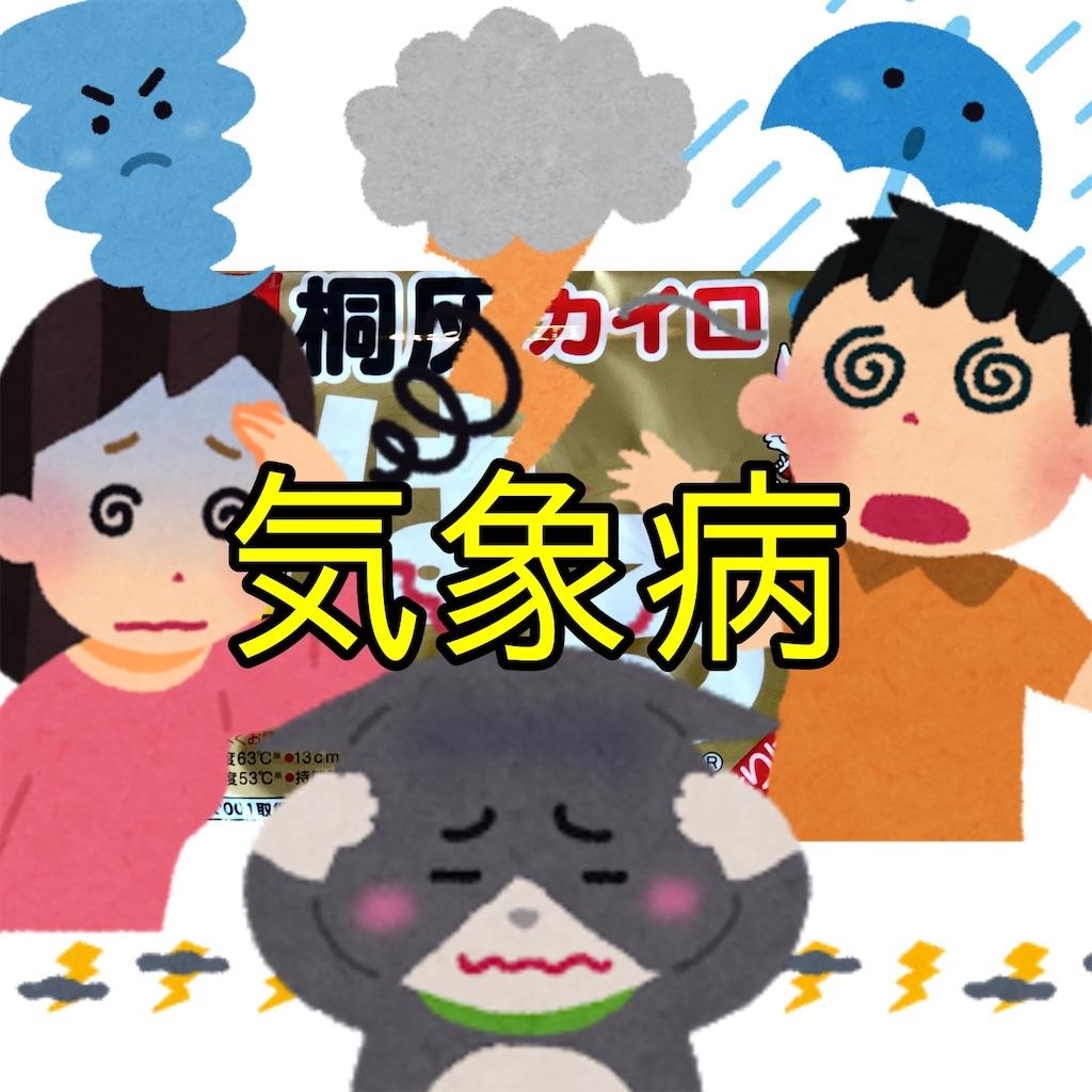 f:id:sakusaku-happy:20190624172833j:image