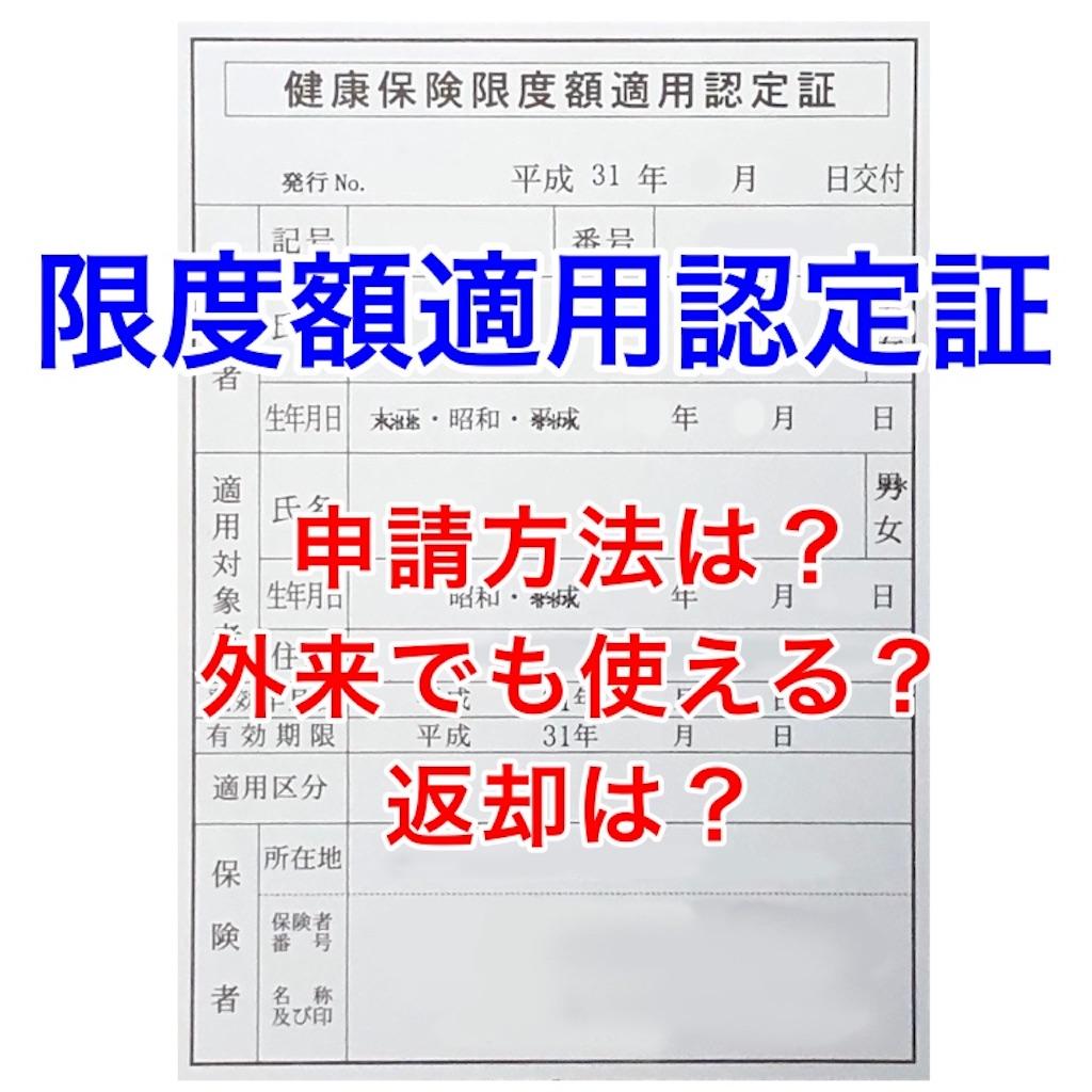 f:id:sakusaku-happy:20190701115836j:image